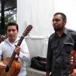Palissandre_Parque_Mxico9